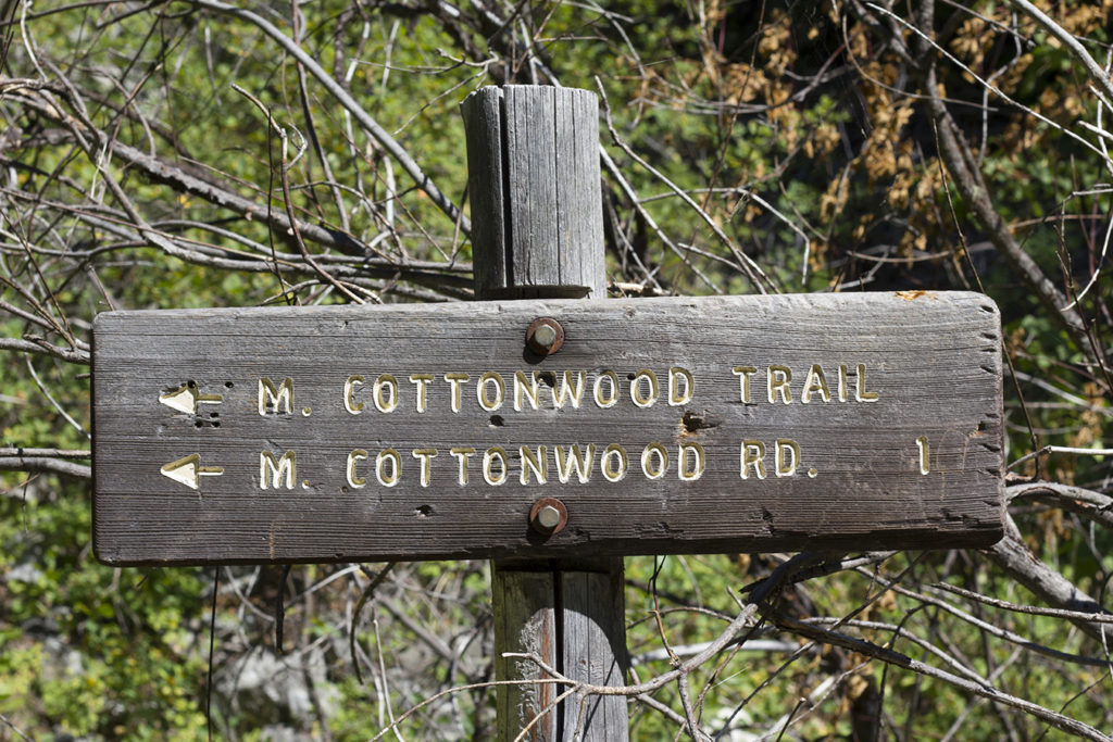 Middle Cottonwood Trail